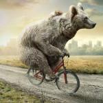¡Qué bien funcionan los osos en publicidad!